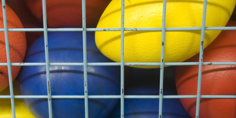Footballs, basketballs and kickballs in a net.